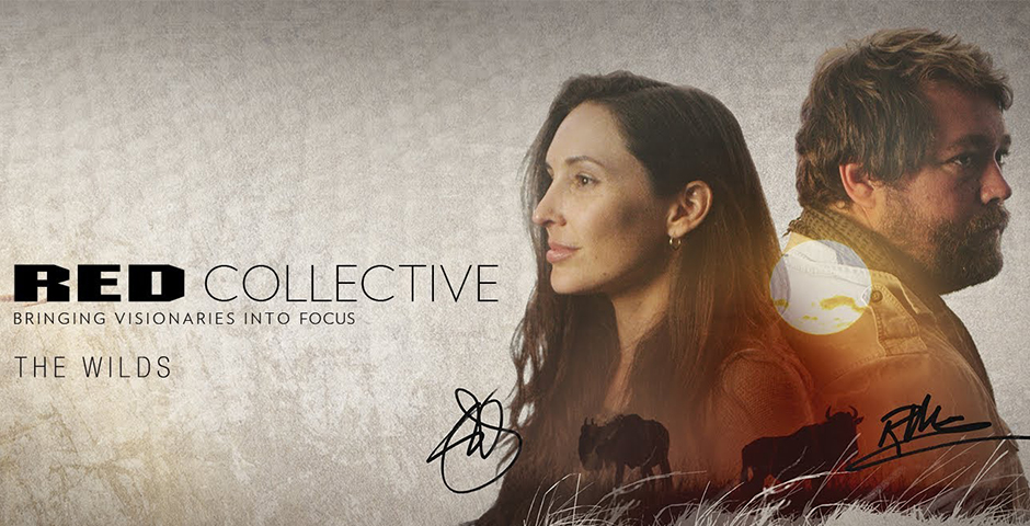 - RED Collective – Bringing Visionaries Into Focus