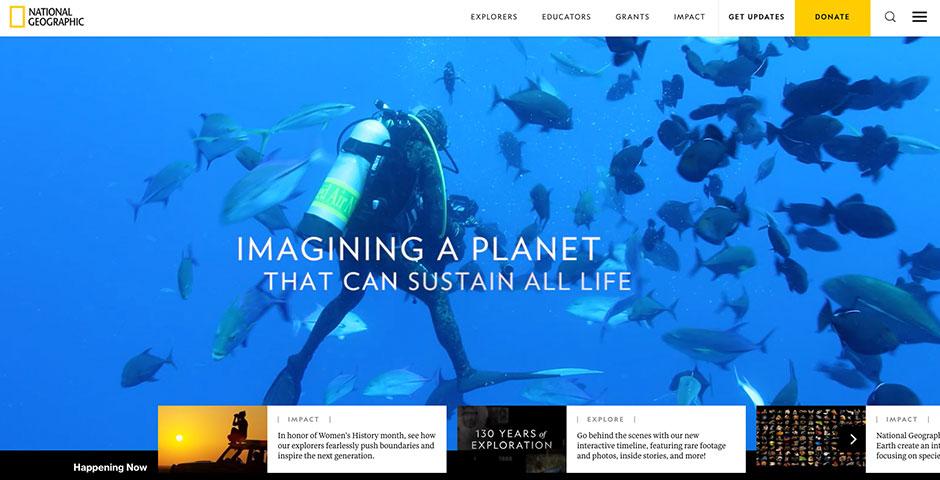 Webby Award Winner - National Geographic Society homepage