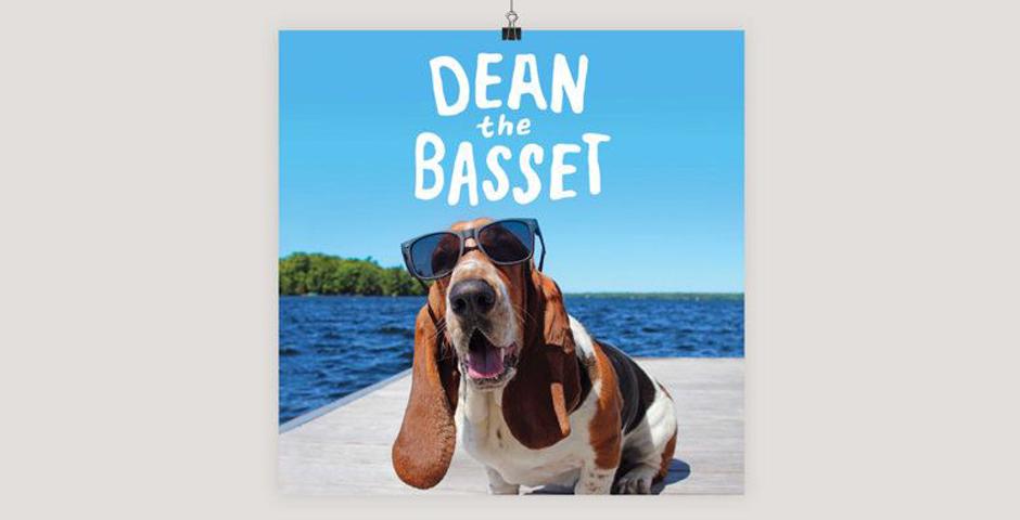 People's Voice - Dean the Basset