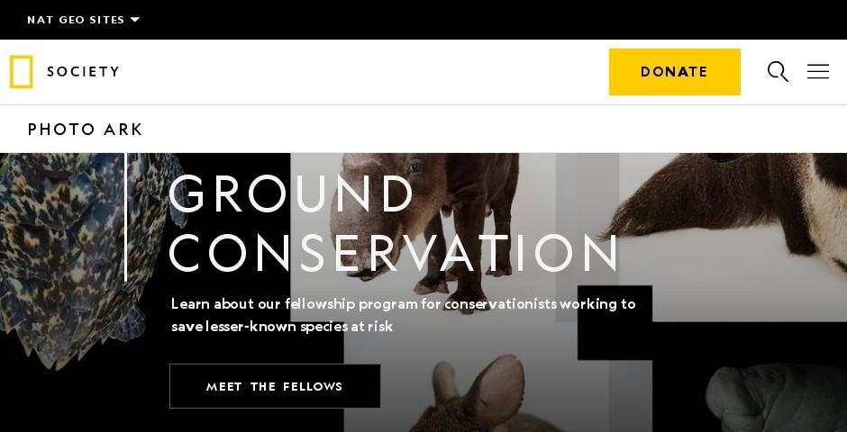 Webby Award Nominee - National Geographic Photo Ark
