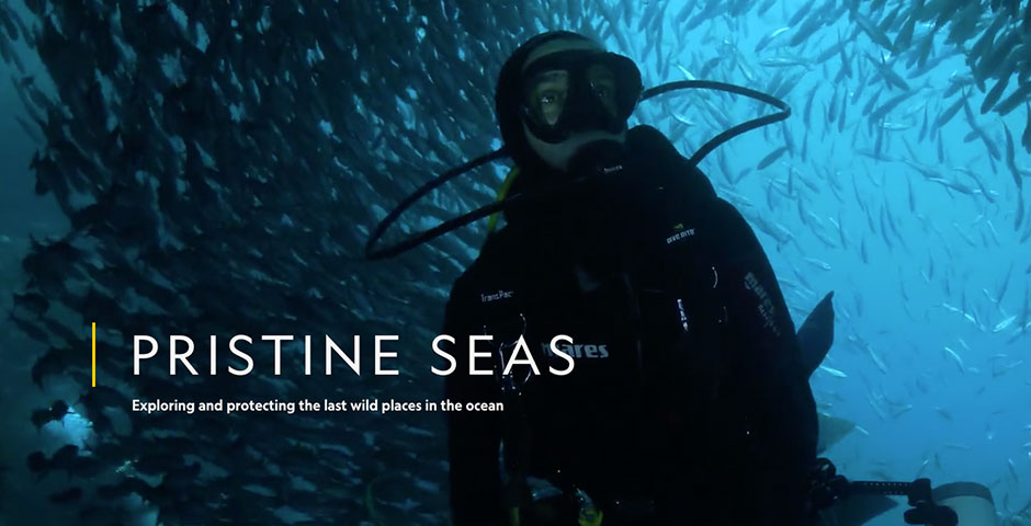 People's Voice / Webby Award Winner - National Geographic Pristine Seas