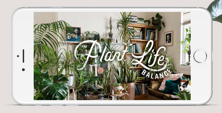 People's Voice / Webby Award Winner - Plant Life Balance