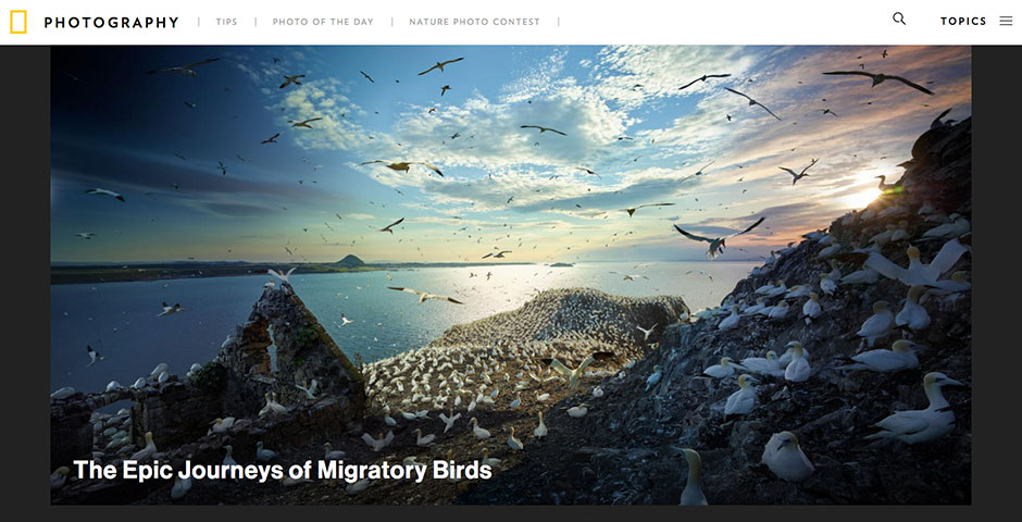 2018 Webby Winner - National Geographic Photography