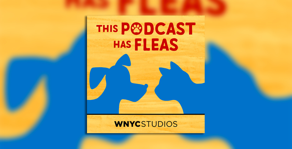 Nominee - This Podcast Has Fleas