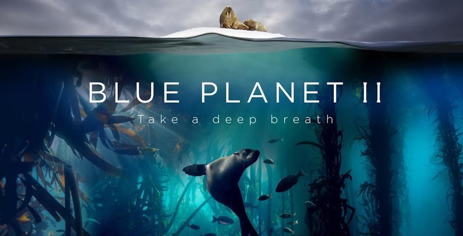 2018 Webby Winner - Blue Planet II - Campaign