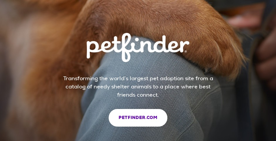 People's Voice - Petfinder