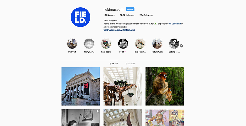 Webby Award Winner - The Field Museum Instagram Account