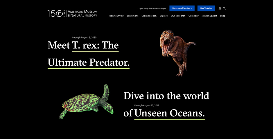 Nominee - American Museum of Natural History