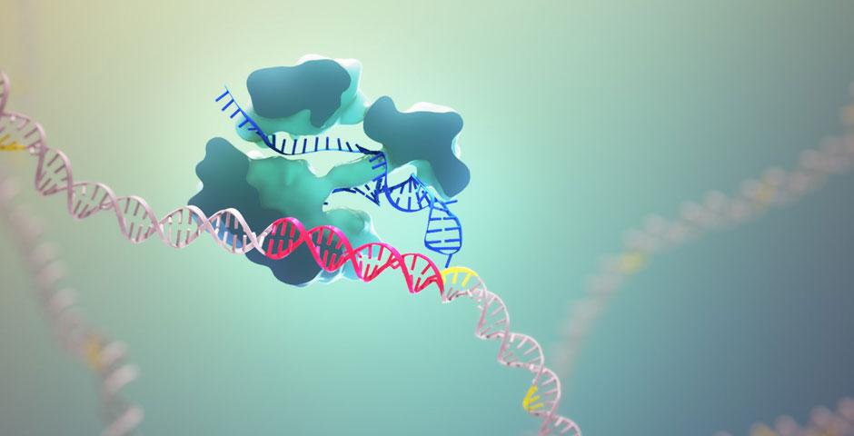 Nominee - CRISPR-Cas9: Mechanism & Applications