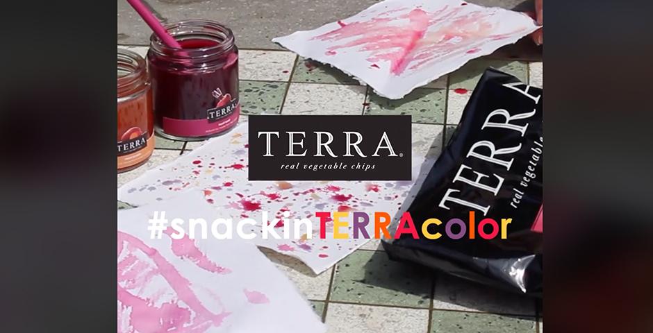 Nominee - Terra Paints