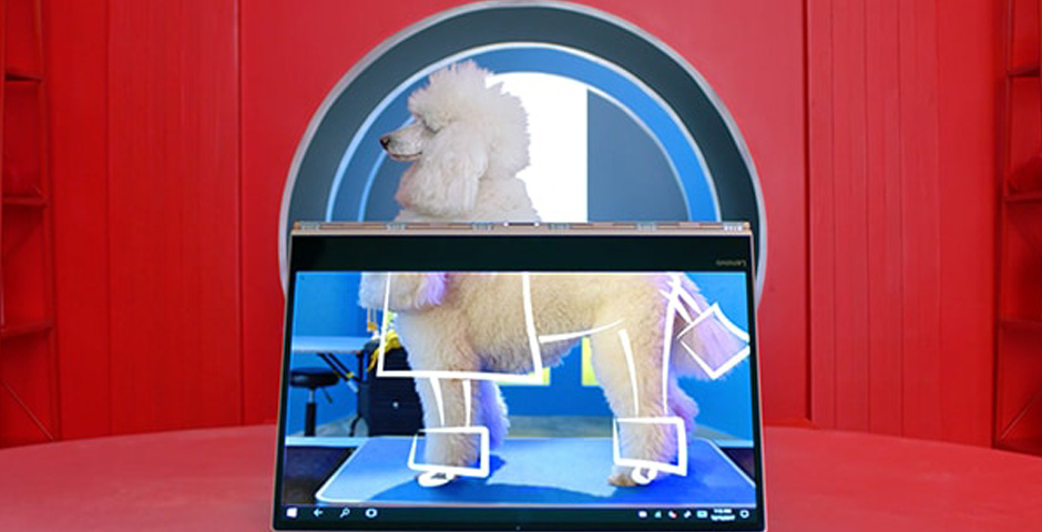 Nominee - The Woo – 'Eccentric Groomer' for Lenovo