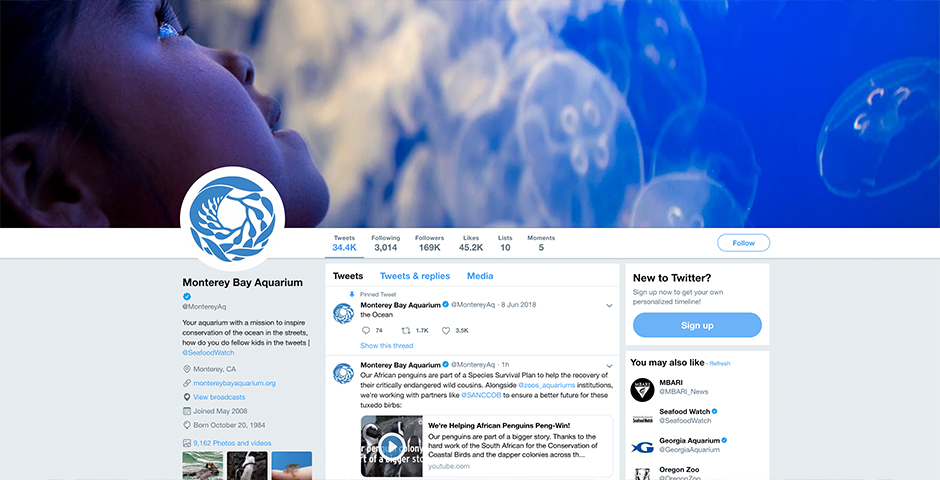 Nominee - Monterey Bay Aquarium Social Media
