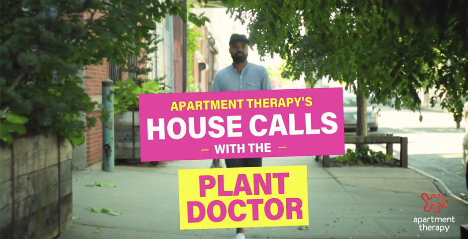 Webby Award Nominee - House Calls With The Plant Doctor