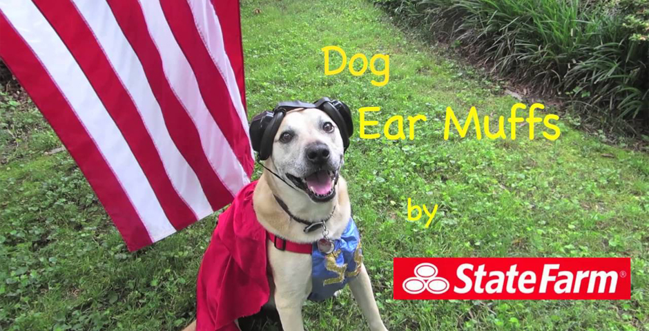 Honoree - State Farm Dog Friendly Fourth