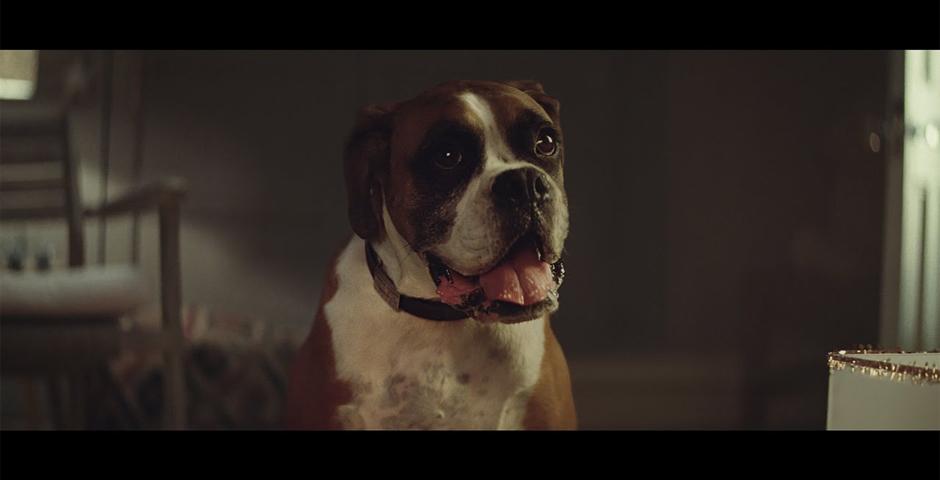 "People's Voice - John Lewis, ""Buster the Boxer"""