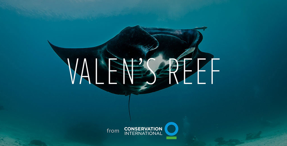 Honoree - Conservation International: Valen's Reef