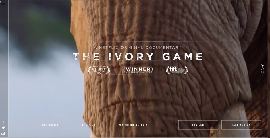 Webby Award Nominee - The Ivory Game