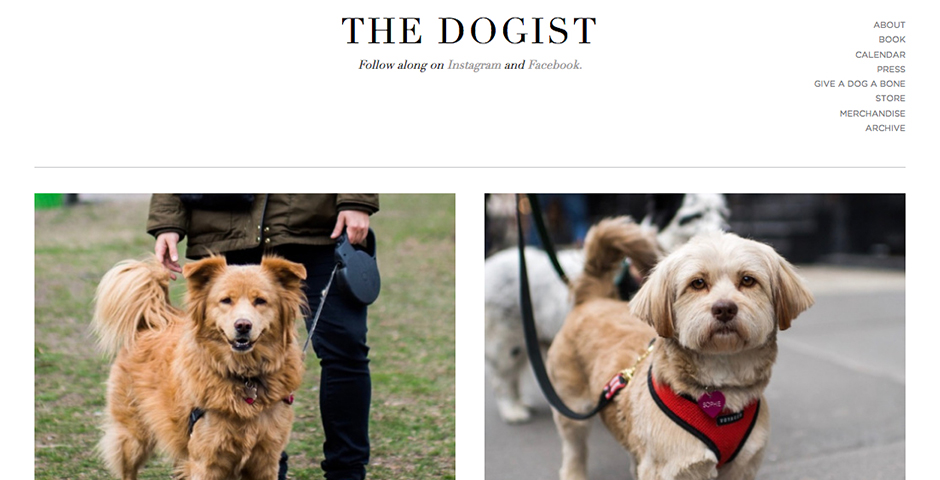Nominee - The Dogist