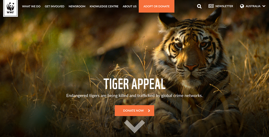 Nominee - WWF Australia website