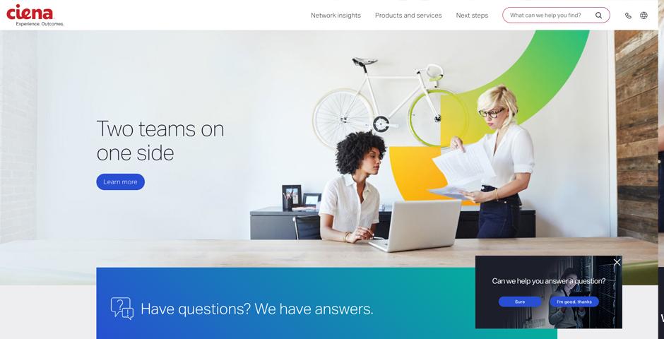 Honoree - ciena.com redesign